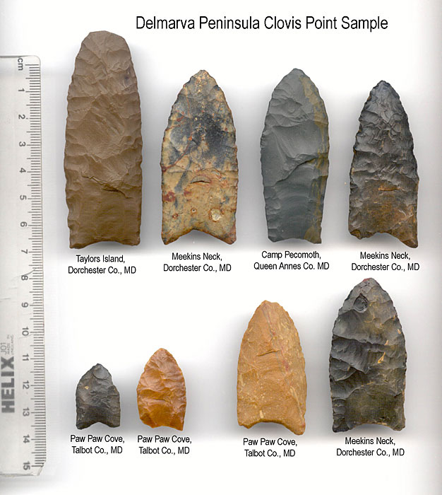 Clovis points (University of Delaware)