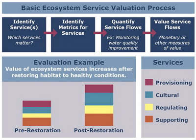 Ecosystem service valuation process (NOAA)