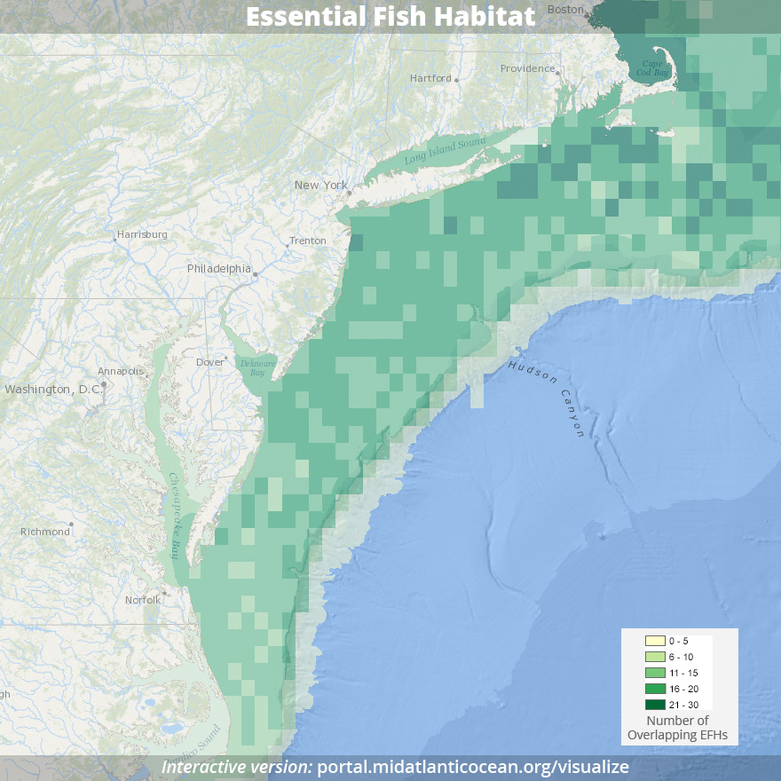 Map of Essential Fish Habitat (Source: MARCO Data Portal)