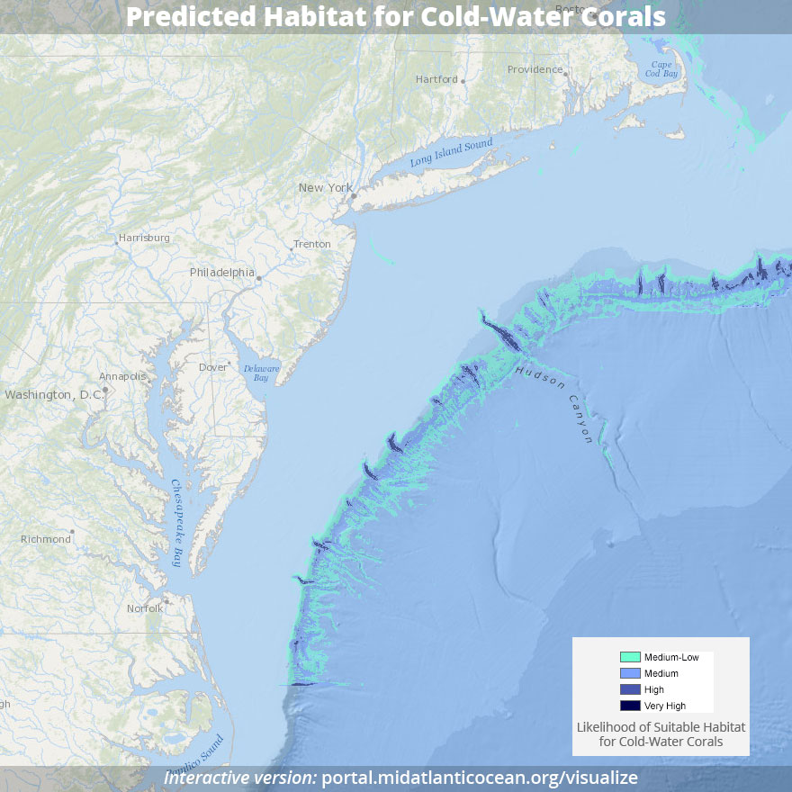 Predicted habitat for cold-water corals