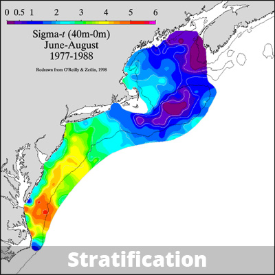 Regional differences in summer stratification, showing strongly stratified areas in the Mid-Atlantic Bight.