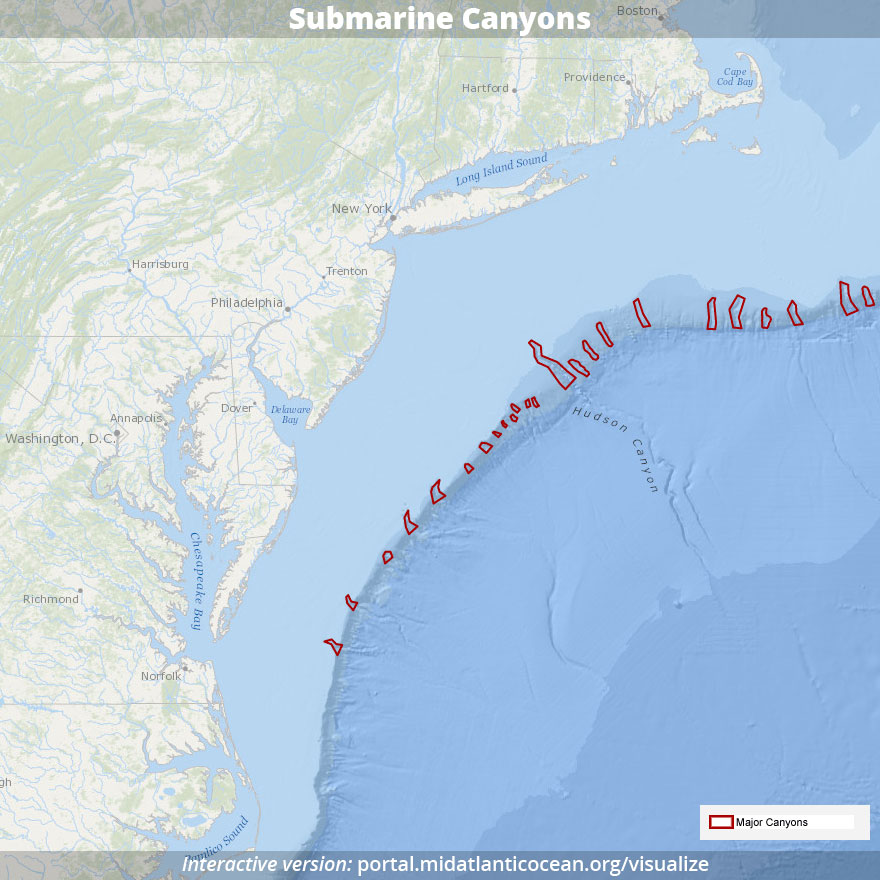 Map of Submarine Canyons